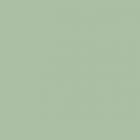 Колер паста Профилюкс №13 зелёная ель 100 мл